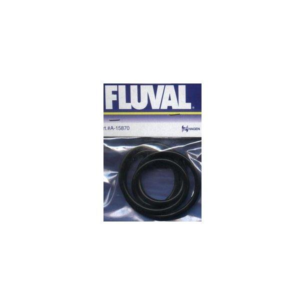 O-ring til Fluval 303